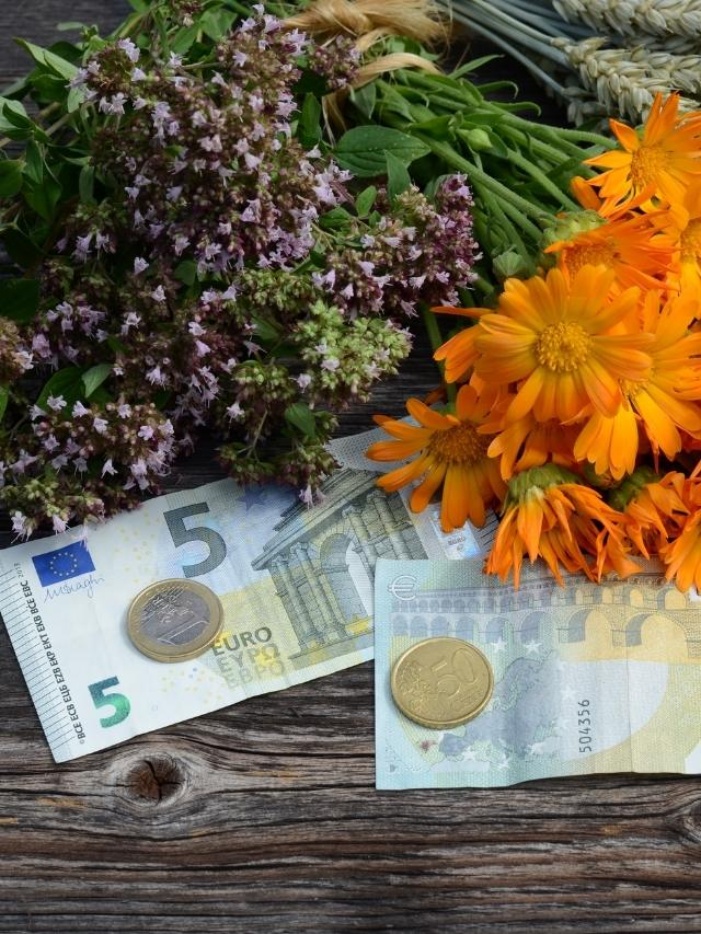 How To Use Herbs To Attract Money